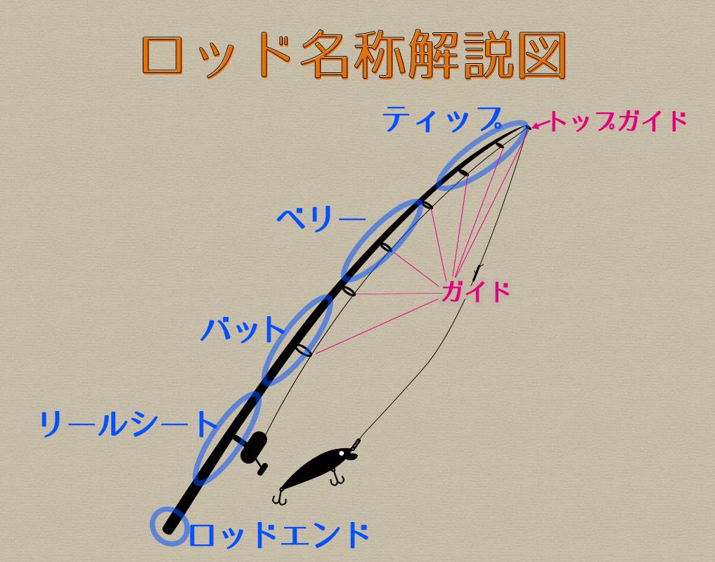 シーバスロッドの説明図