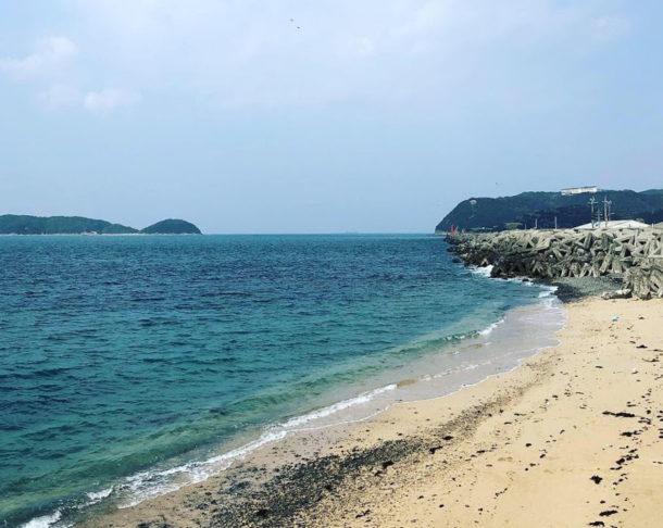 海の幸を求めて青岸と加太で釣りをしてみた!