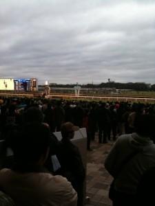 天皇賞の写真