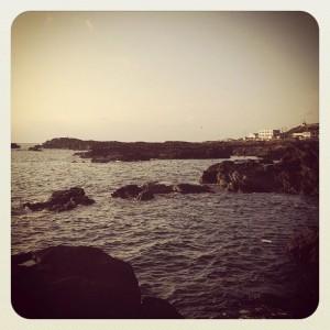 城ヶ島の磯のイメージ