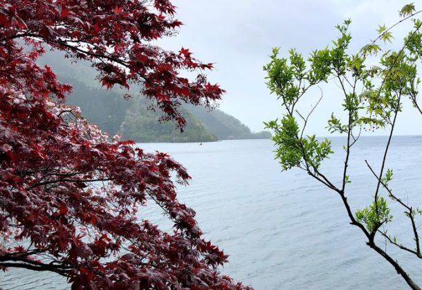 GW開始!奥琵琶湖でバス釣り!