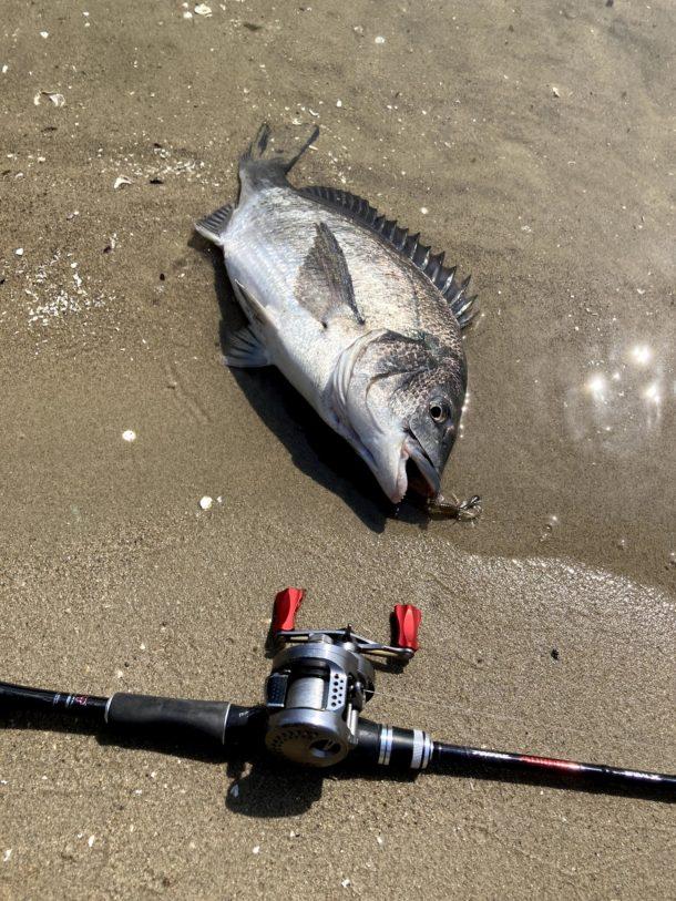 チニング始めてから釣りに使う金が激減した