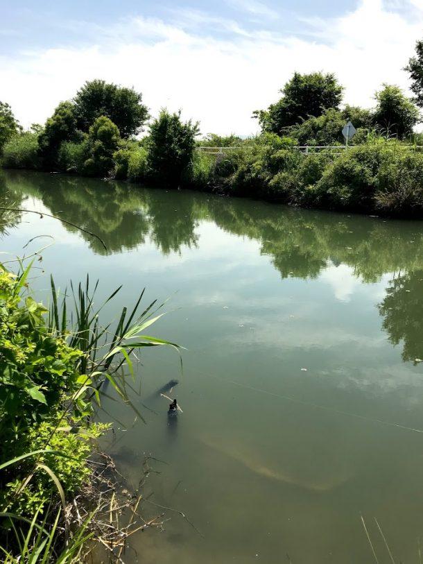 水路イメージ