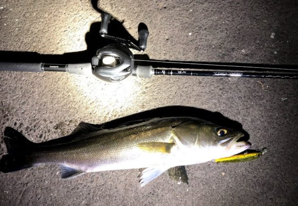 高い釣具を使うと釣りがうまくなるのか?