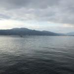 琵琶湖のシャローはまだでした