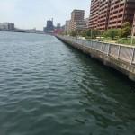 神戸周辺のポイント偵察