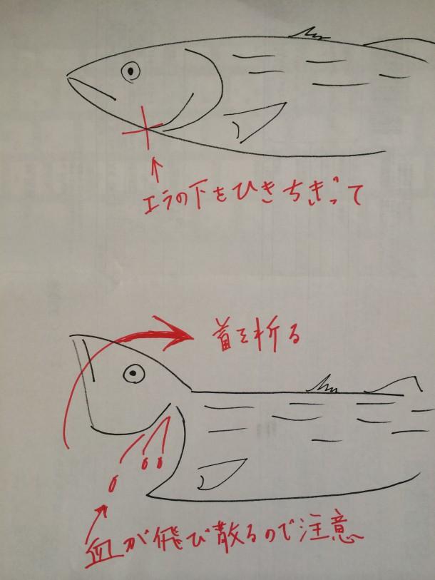 サバ折り画像
