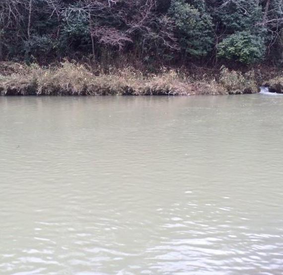 すごい増水した北田原