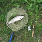 管理釣り場開成フォレストスプリングスは場所が重要