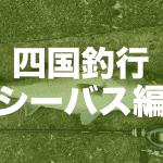 【四国遠征】ぶっといシーバスゲット編【釣旅】