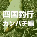 【四国遠征】徳島で奇跡のカンパチゲット編【釣旅】