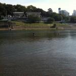 多摩川シーバスはこうやって釣る!丸子堰攻略法